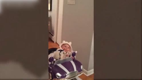 看狗狗们是这么陪孩子玩耍的,画面太温馨,太可爱了!