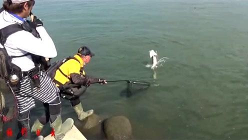 防护堤下路亚大货,好地方就是藏大鱼!