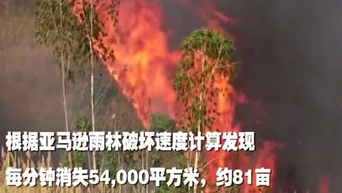 亚马逊雨林已持续燃烧18天,巴西将开始灭火