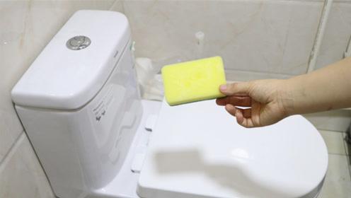 谁都没想到,卫生间放一块百洁布真厉害,不是迷信,后悔才知道