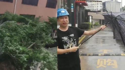 """台风""""白鹿""""登陆福建东山 6省区有大到暴雨 新伞出门被吹散架"""