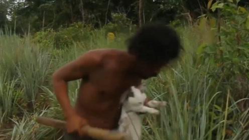 大叔设置简易捕兽陷阱,草丛中捕捉兔子,太厉害了