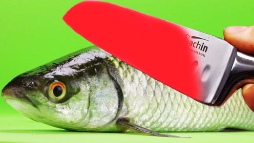 1000℃钢刀有多强悍?老外直接用它来烤鱼,成品让人口水直流
