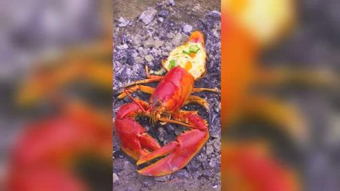 学会这道芝士焗龙虾,虾肉鲜嫩芝香浓郁,再也不用去餐厅了!