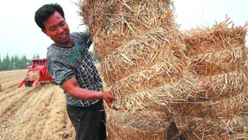 农村禁止了劈柴焚烧,改用天然管道,被环境治理频频针对!