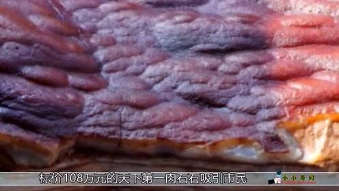 天下第一肉石,猪肉贵这石头更贵180万一块我是买不起!