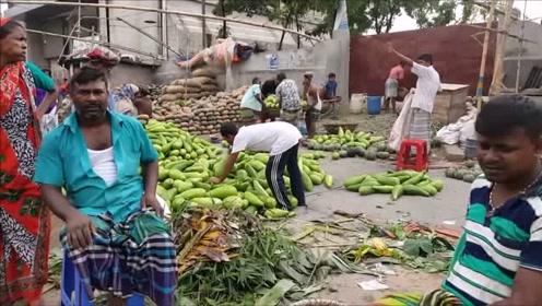 闲逛印度早上最大销售蔬菜市场,看三哥如何开挂卖菜