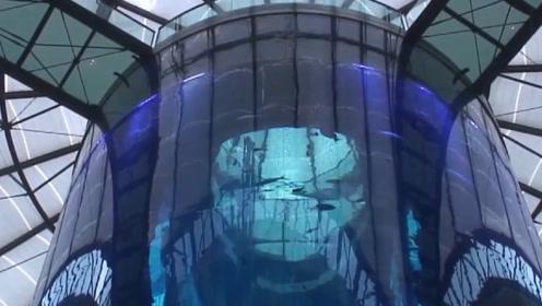 世界上最大的鱼缸,足足有8层楼高堪比水族馆,造价耗费近亿元!