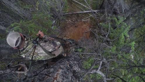 老外拿长毛狩猎,狩猎方式奇特,竟然站在树上,你见过吗?