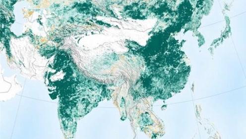 美国卫星:中国绿化面积不断增加,新增了四分之一个亚马逊雨林