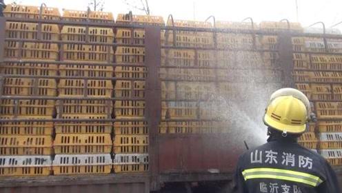 """真·落汤鸡!货车抛锚1000只鸡中暑,消防给鸡""""洗澡""""降温"""
