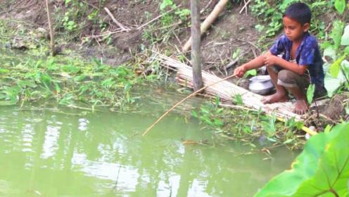 这小孩钓鱼太牛了,用根小竹竿瞬间钓上一条大家伙,看着好过瘾