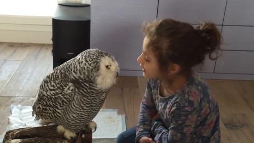 小女孩亲吻猫头鹰,谁知猫头鹰是个戏精,马上亲了回去!