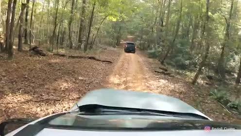 2019款丰田RAV4山林越野测试,看后值不值得买,自己拿主意