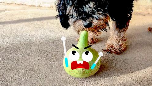 会说话的葫芦被小狗欺负了,还要给它点颜色看看,奇趣搞笑动画