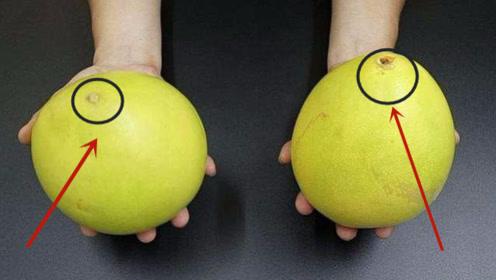 柚子甜不甜,看一眼这里就知道了,一挑一个准,爱吃柚子的都学学