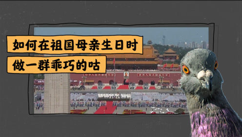 怎样在天安门放飞几万只鸽子?原来北京信鸽协会扮演重要角色