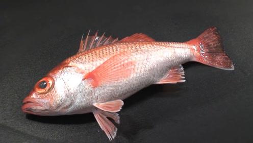 日本大厨买回来一条鱼,连鱼鳞都不放过,看完过程:吃不起