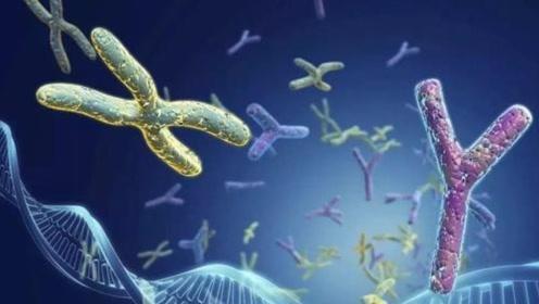 生命出现并非巧合?基因被它们插手?那我们人类是被设计的吗?