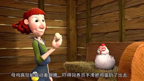 母鸡为了保护鸡蛋,大战饲养员,最后母鸡来了一个大反转!