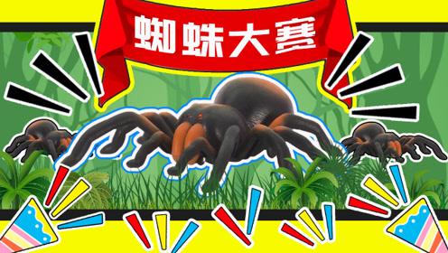 蜘蛛界的巨无霸是黑寡妇还是大狼蛛呢?_02