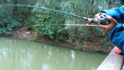 钓鱼:天越冷去钓鱼我就越兴奋,不仅鱼口好,关键是过瘾