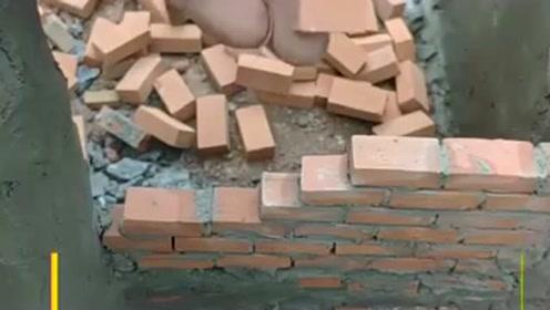 世界上最小的砖,还没满月就出来盖房子,也太萌了吧!