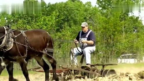 农民坐着耕地,第一次见到这么舒服的耕作方式,你看多省力
