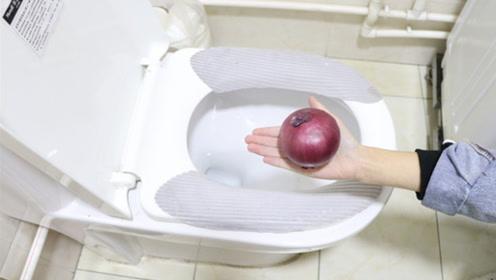 赶紧在卫生间放一个洋葱,原来这么厉害,学会不吃亏,真实用