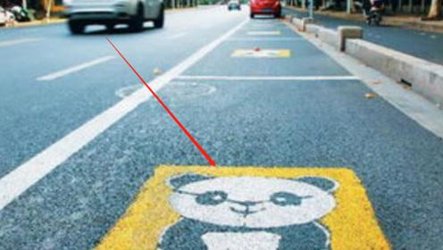 停车位画个熊猫啥意思?交警:停错扣3分罚200!早了解不吃亏