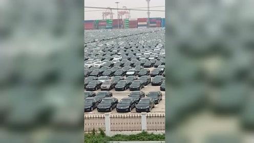 密密麻麻的全是车,大部分都是黑色车!