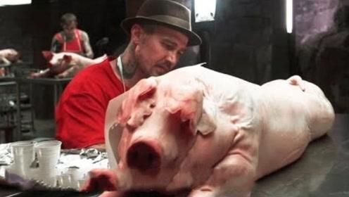 世界上最残忍的画家,在猪身上画画,猪皮价格翻了上万倍!