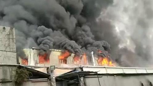 东莞一印刷厂发生大火 火势猛烈似龙卷风直冲天际