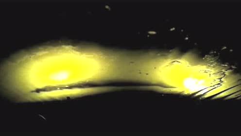 深夜导航引路 不慎掉入2 3米深水坑 车主奋力游泳脱险