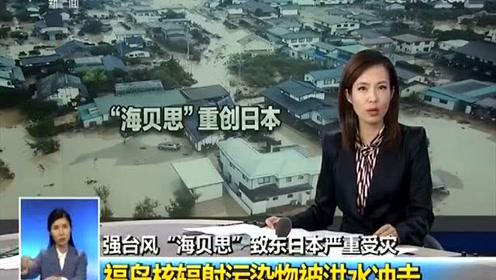 日本核辐射污染物被冲入河流