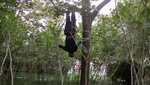 倒挂金钟一字马,灵活像猴子!6旬大爷公园花式健身惊呆众人