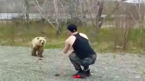 战斗民族小伙就是虎,作死挑逗棕熊,下一刻就后悔了!
