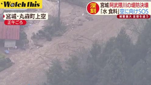 日本台风灾民断粮断水孤立无援 为活命用树木做棍棒摆出求救信号