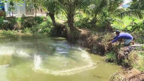 村口的废弃水塘,大叔卖力撒网下去,一转眼大获丰收,够吃一两天了