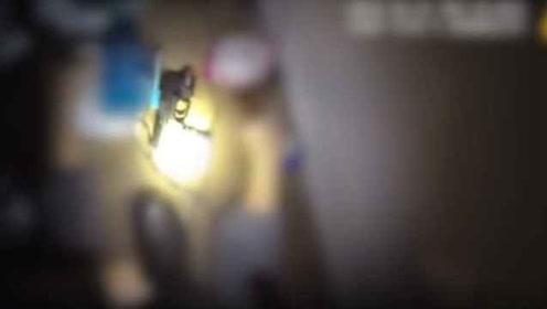 误认是窃贼?美国警察入室枪杀黑人女子引众怒,现场视频曝光