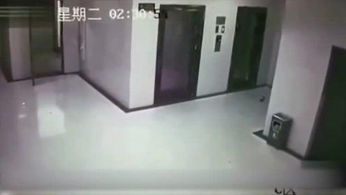 深夜女子乘坐电梯回家,纹身男子尾随欲行不轨,她如此应对!