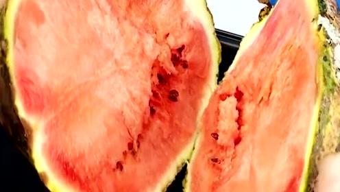 发霉的西瓜到底能不能吃,味道如何,结果不可思议