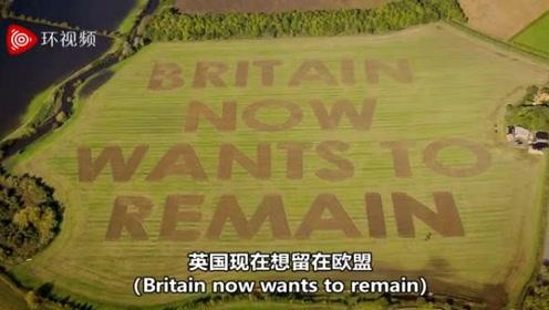 """议会投票前夕,英国人说:""""现在想留在欧盟""""!"""