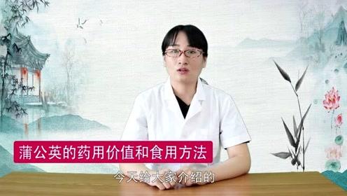 为什么说蒲公英是解毒佳品?中医分享蒲公英三大功效,实用还治病