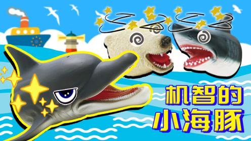 动物故事:机智小海豚能逃过鲨鱼和北极熊的追捕吗?