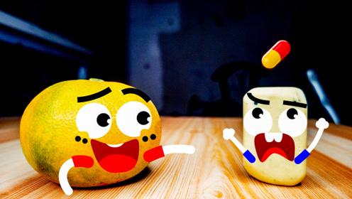 奇趣爆笑动画,会说话的水果和板凳,普通物品也有情绪