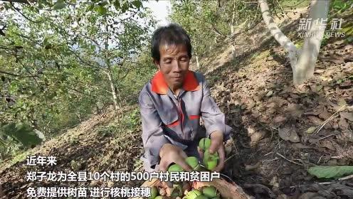 """农民郑子龙:播绿三十载 """"撂荒地""""变""""花果山"""""""