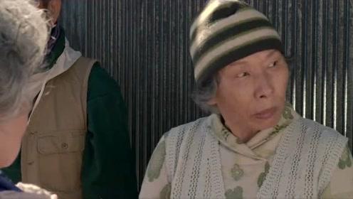 《猫与爷爷》温情治愈,老人与猫相依为命