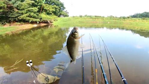钓鱼:群山环绕,这里的环境太好了