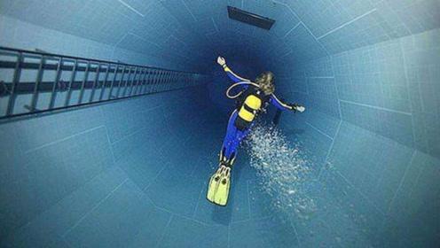 全球最贵的游泳池,水下世界太精彩,难怪这么贵